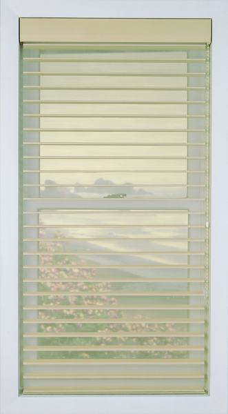 "Alamode Window Fashions 2"" Economy Sheer Shades"